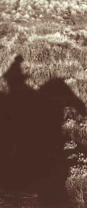 silhouette with horse